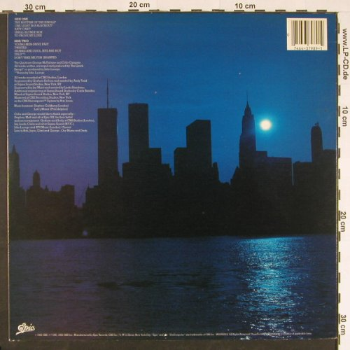 Quick, the: One Light in a Blackout, Epic(FE 37989), US, 82 - LP - B5261 - 5,00 Euro
