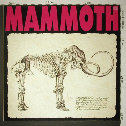 Mammoth: Same, Jive(244 980-1), D, 1980 - LP - C4828 - 5,00 Euro
