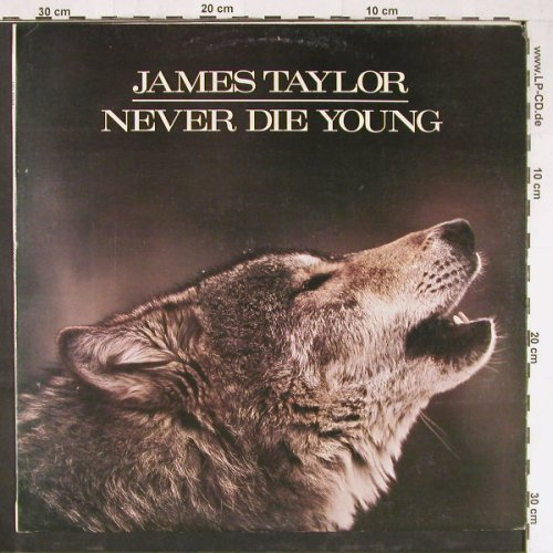 Taylor,James: Never Die Young, CBS(460434 1), Yugoslavia, 1988 - LP - E2932 - 4,00 Euro