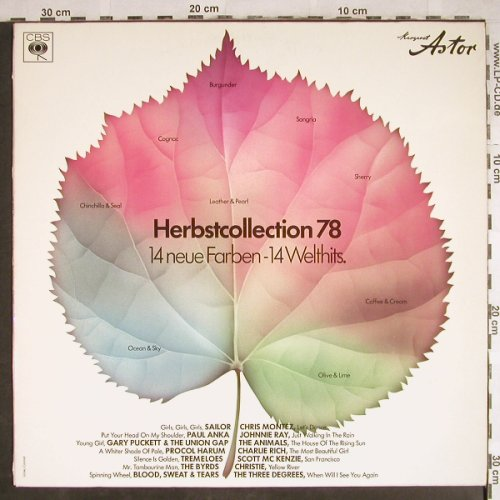 V.A.Herbstcollection 78: Sailor...Three Degrees, CBS/Margaret Astor(LSP 13 624), D, 1978 - LP - H7816 - 5,00 Euro