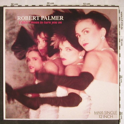 Palmer,Robert: I Didn't Mean To Turn You On+1, Island(608 328), D, 1985 - 12inch - H7830 - 3,00 Euro