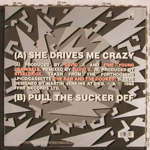 Fine Young Cannibals: She Drives Me Crazy+1(grey Cover), London(886 361-1), D, 1988 - 12inch - H9977 - 2,00 Euro