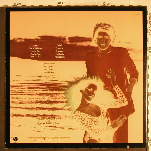Browne,Duncan: The Wild Places, Sire(SRK 6065), US, co, 1978 - LP - X991 - 5,00 Euro