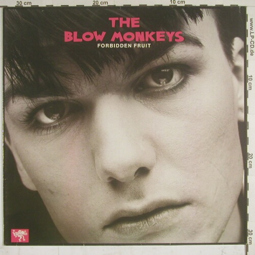 Blow Monkeys: Forbidden Fruit +2,+Facts, RCA(), D, 85 - 12inch - A3371 - 2,50 Euro