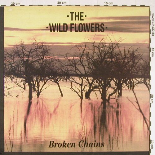 Wild Flowers,The: Broken Chains +3, Chapter 22(12 CHAP 23), UK, 1988 - 12inch - E139 - 4,00 Euro