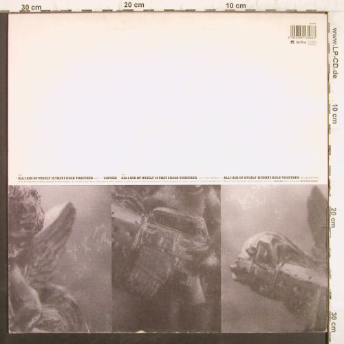 Ned's Atomic Dustbin: All I Ask Of Myself is that hold..., Sony/Furtive(661356 6), , 1995 - 12inch - F8839 - 4,00 Euro