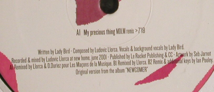Llorca feat.Lady Bird: My Precious Thing*3,LC,Promo, F Communications(), D, FS-New, 2001 - 12inch - H6441 - 4,00 Euro