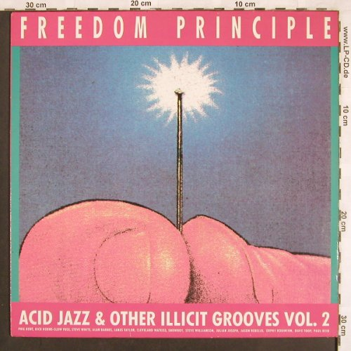 V.A.Freedom Principle Vol.2: Acid Jazz & other illicit Grooves, Polyd.(837 925-1), UK, 1989 - LP - X3545 - 7,50 Euro