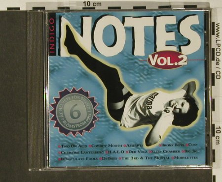 V.A.Indigo Notes Vol.2: 14 Tr., Notes Music(), D, 1996 - CD - 55546 - 4,00 Euro