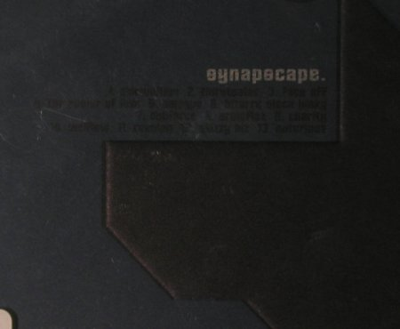 Synapscape: Positive Pop, FS-New, Nova-Ant Zen(), , 2001 - CD - 94923 - 12,50 Euro