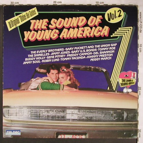 V.A.The Sound of Young Americans: Vol.2, Buddy Holly...Johnny Preston, Teldec(6.25021 AP), D, 1982 - LP - X4797 - 5,00 Euro