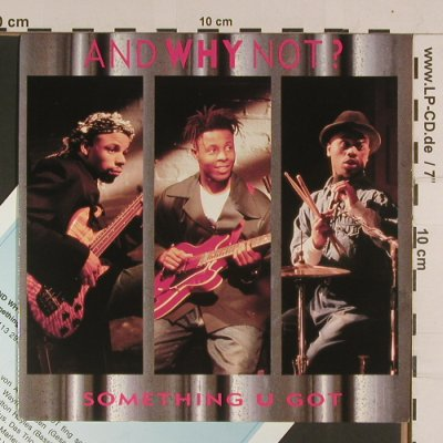 And Why Not: Something you got/Diamonds, Island(842 244-7), UK, 1990 - 7inch - S8025 - 2,50 Euro