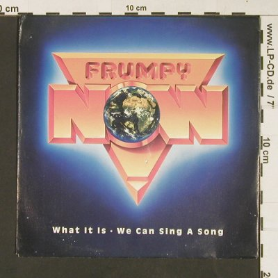Frumpy: What it is, m-/vg+, Mercury(876 674-7), D, 1990 - 7inch - S9007 - 2,50 Euro