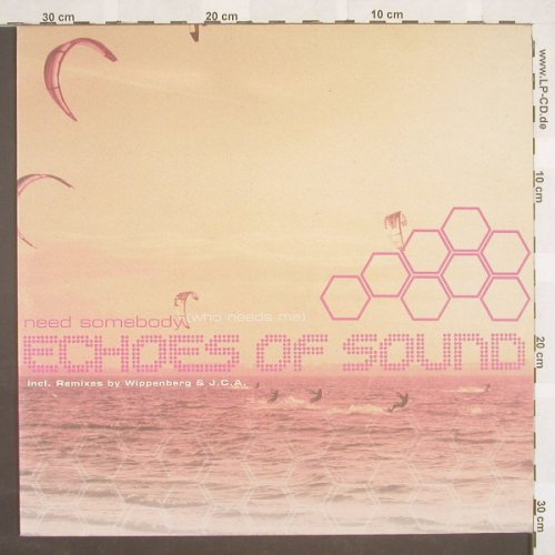 Echoes Of Sound: Need Sombody(Who Needs Me)*4, Time SRL(), D, 02 - 12inch - B8799 - 3,00 Euro