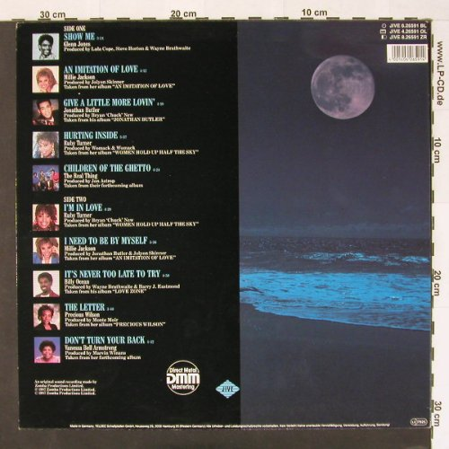 V.A.Soul Searching Vol.1: Ocean,Butler,Turner..., Jive(6.26591 BL), D, 87 - LP - C5 - 3,00 Euro