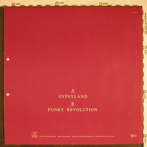 Fleming,Joy: Gypsyland / Funky Revolution, Rough Diamonds(RD 02283), D, 1988 - 12inch - H8279 - 3,00 Euro