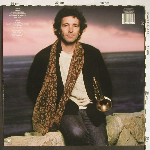 Alpert,Herb: Beyond, AM(SP-3717), US, co, 1980 - LP - H1904 - 7,50 Euro